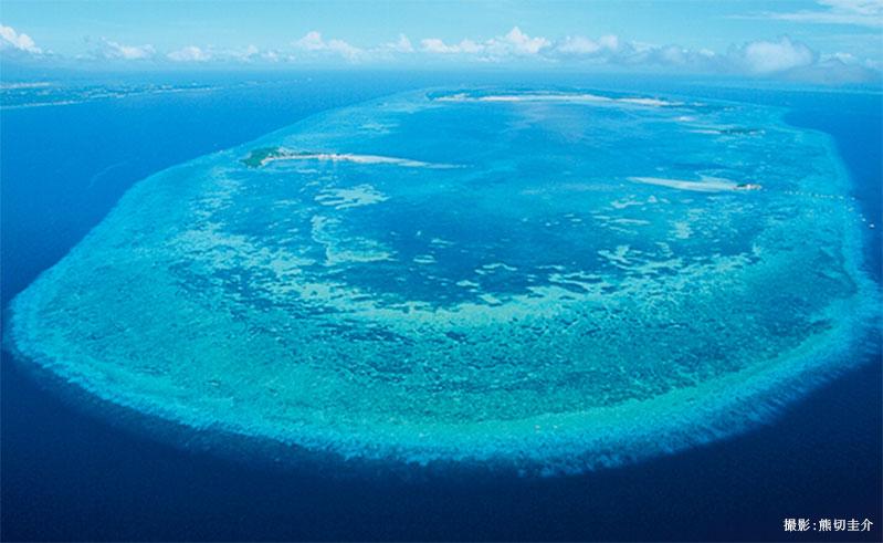 「珊瑚の環」の上にできた島